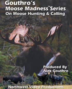 Moose Madness Series on Moose Hunting and Calling Overview