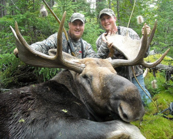Jesse Voight's Bull Moose